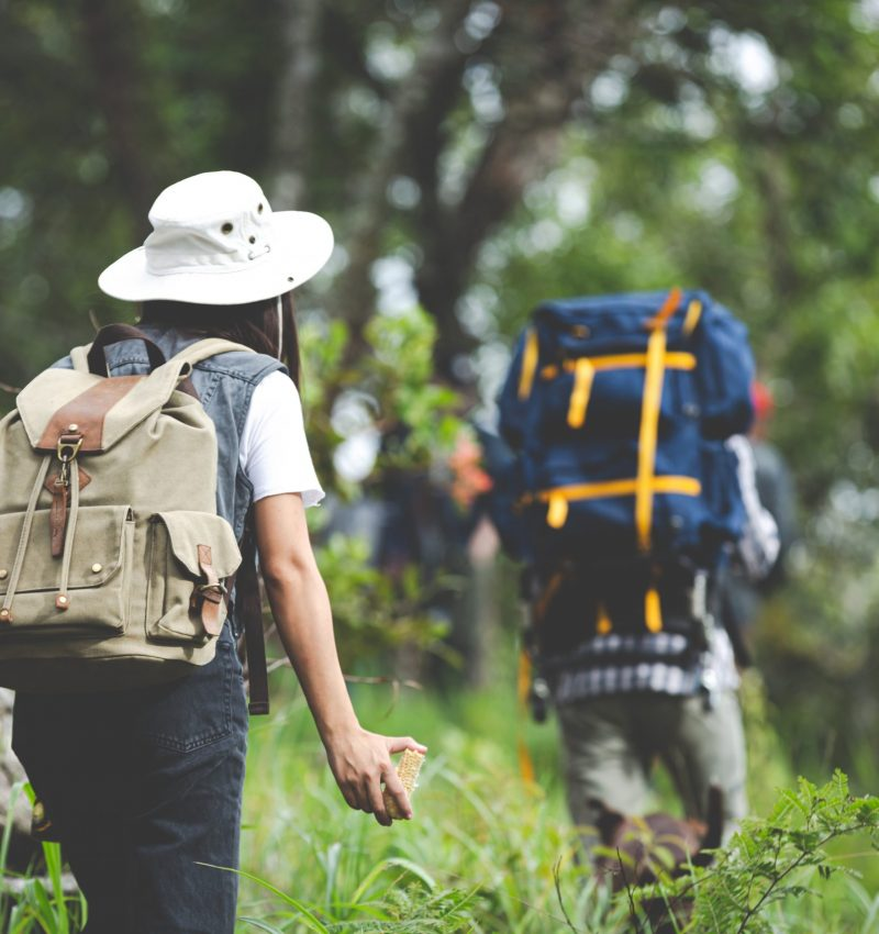 A happy hiker walks through the jungle with a backpack.